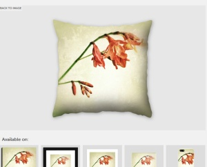 photo on pillow