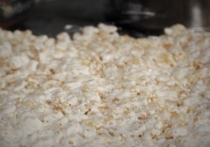 glutenfree_ricekrispytreats